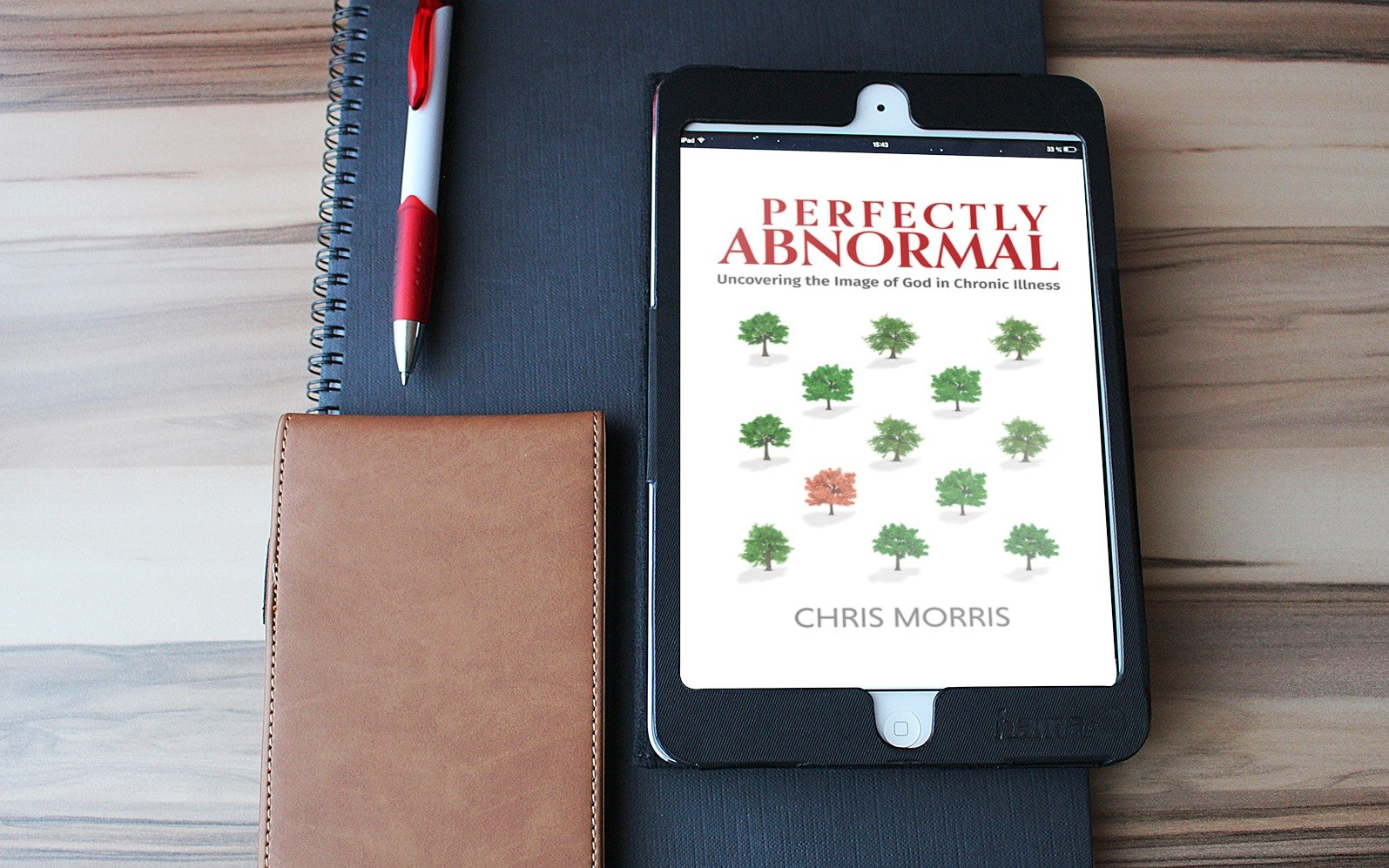 Perfectly Abnormal, an interview with Chris Morris